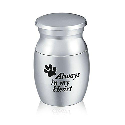 AnazoZ Edelstahl Memorial Urnen Always in My Heart Mini Urne Gedenkbehälter, Andenken Wasserdicht...