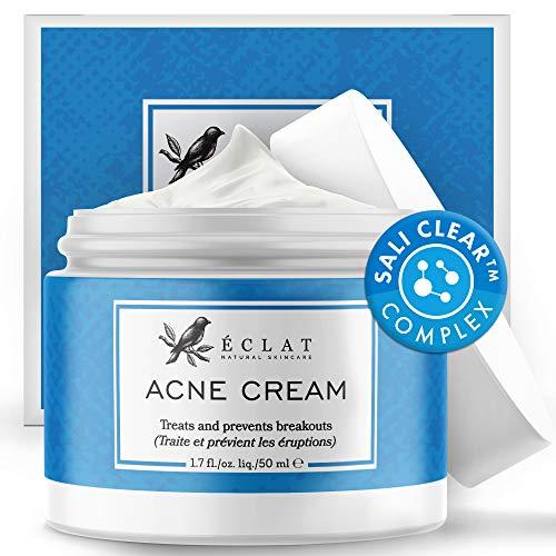 Akne Creme von Eclat - Natürlich Wirksame Ascorbinsäure Anti Pickel Creme - Entfernt Hautflecken,...